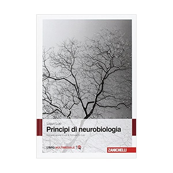 core curriculum malattie del sistema nervoso